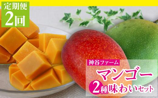 【定期便2回】神谷ファームのマンゴー2種味わいセット