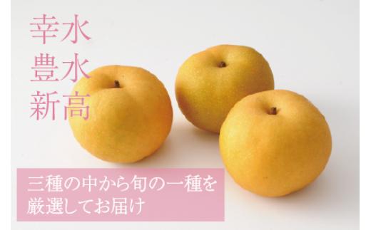 <品種おまかせ>旬の梨3kg※7月中旬から10月下旬の収穫期間内出荷【A193】