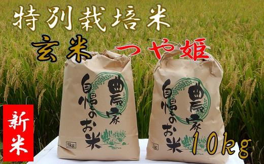 【令和2年産・玄米】ファミリー農園吉永の特別栽培米つや姫10kg