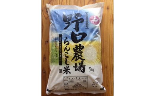 らんこし米(ゆめぴりか) 5Kg(野口農場)