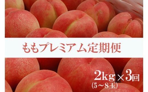 No.0117 桃プレミアム定期便