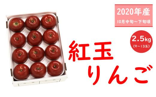 【先行受付】紅玉りんご_R2年産_2.5kg_10月中旬頃からお届け