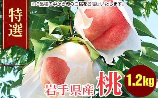 ふじむら農園の特撰白桃1.2kg