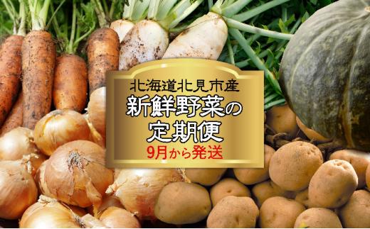 [№5742-0916]北海道北見市産 新鮮野菜の定期便 9月から発送