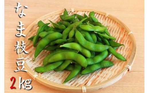【期間限定/数量限定】 北上産 生枝豆2㎏