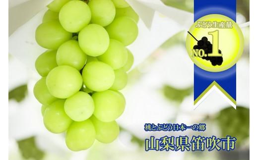 ぶどうの生産量日本一の笛吹市!