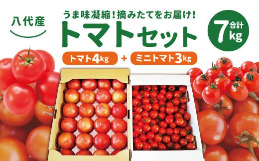 八代産 トマトセット 合計 7kg(トマト4kg ミニトマト3kg)