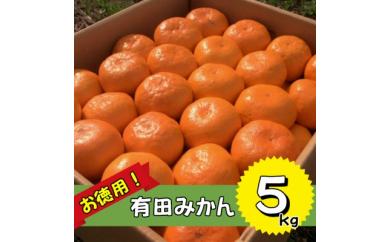 ■訳あり!有田みかん たっぷり5kg!【2020年11月発送】