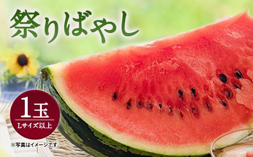 熊本県産 すいか 「祭りばやし」 Lサイズ以上 1玉 西瓜 合志市