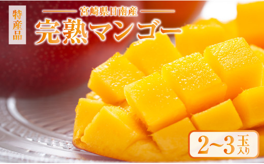 BD43-191 みやざき完熟マンゴー(2~3玉)