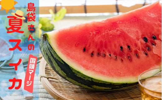 島袋さんの夏スイカ《5〜7Kg×2⽟》【2020年初夏発送】