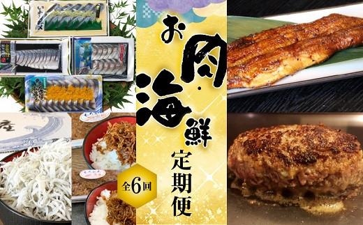 【お試し】お肉・海鮮 定期便(全6回お届け) H028-013