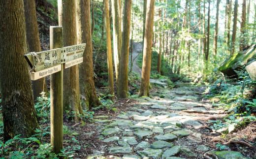 世界遺産「熊野古道」