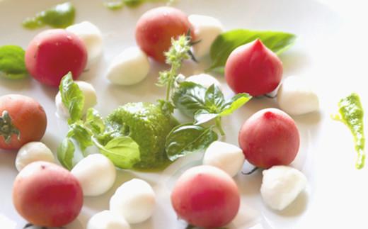 洋風ぬたジェノベーゼ風ソース使用例【温野菜、サラダ】