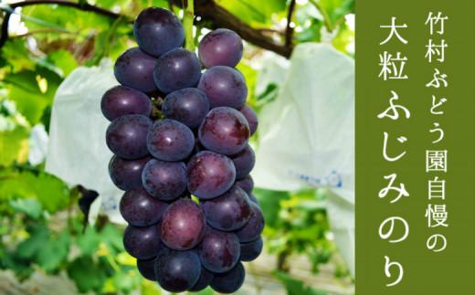 葡萄づくり40年!竹村ぶどう園の種なし「藤稔」約1.8kg【C260】