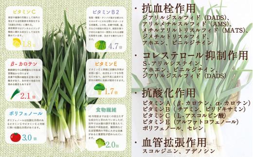 葉にんにくは緑黄色野菜なニンニクだからビタミン・ポリフェノールなど栄養が豊富です。