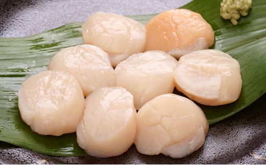 [№5708-0931]【枝幸ほたて】山武水産 冷凍ほたて貝柱1.5kg