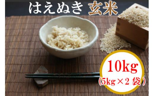 A01-105 【玄米】 山形県鶴岡産はえぬき 令和元年産米 10kg