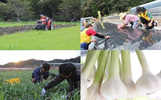 自社のオーガニック農園は有機JASを取得し、農薬や化学肥料不使用で栽培しています。