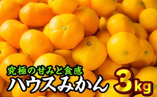 II-10 三重県産 ハウスみかん(温州みかん)3kg《先行予約商品(7月〜8月出荷)》