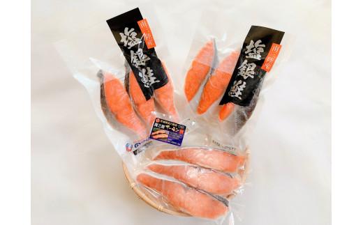 [A14]鮭づくしパック