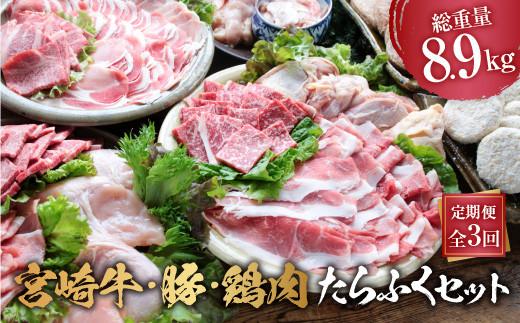 CDB2 3か月定期便「お楽しみ」宮崎牛・豚・鶏肉たらふくセット(総重量8.9kg)都農町加工品