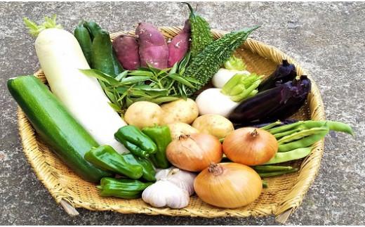 どの野菜が届くかはお楽しみに。画像内容はイメージです。
