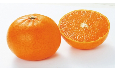■【2021年2月中旬以降出荷】みかんの大トロと呼ばれる希少柑橘 和歌山県有田産 せとか 5kg
