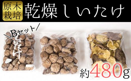 食感と甘みが格別!臼杵産ふるさと乾しいたけBセット(計480g)