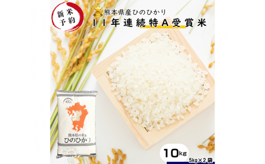 No.195 ヒノヒカリ白米10kg【令和2年産予約】熊本県産 / 特A ひのひかり お米 とれたて 熊本県 特産品