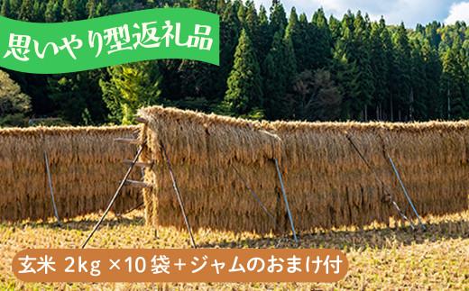 【思いやり型】お米20kg あきたこまち玄米「大野集落の米」2kg×10袋