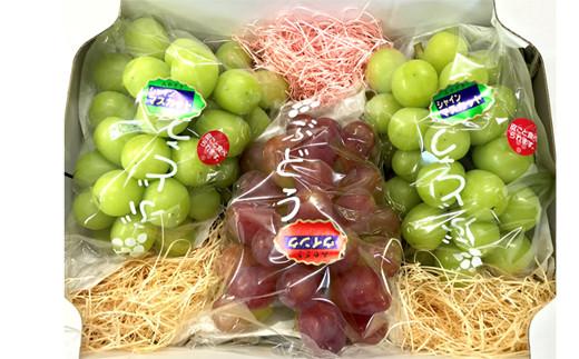 ぶどう詰め合わせセット<約2.0kg:前田果樹園>  SMK02