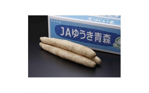 青森県特産ながいも A2L(6本入)約5kg【1111855】