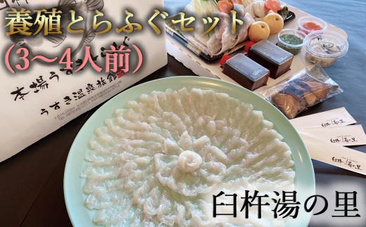 鮮度と自家製ポン酢にこだわった臼杵湯の里とらふぐセット(3~4人前)