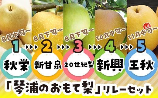 67.【先行予約】「琴浦のおもて梨」リレーセット