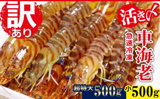 【訳あり】活〆急速冷凍車海老500g(小)+500g(超特大)