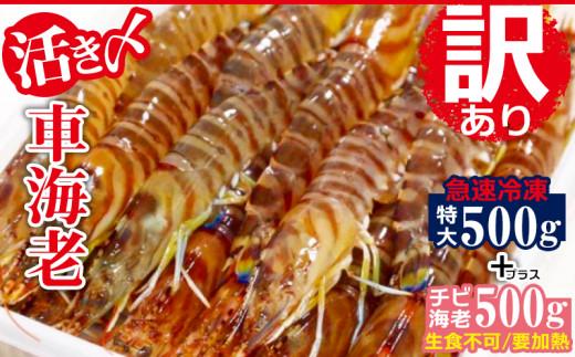【訳あり】活〆急速冷凍車海老500g+チビ海老500g(要加熱)