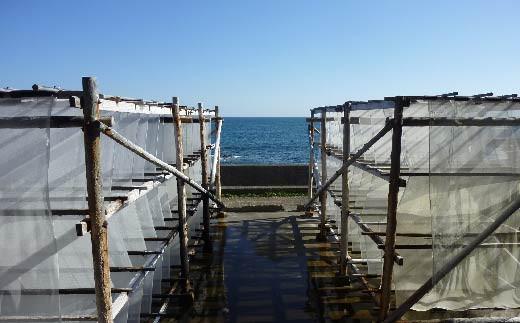 太平洋の海水を汲み上げて何度も何度も手間暇掛けて攪拌と乾燥作業を繰り返すことにより、完全天日塩は作られます。