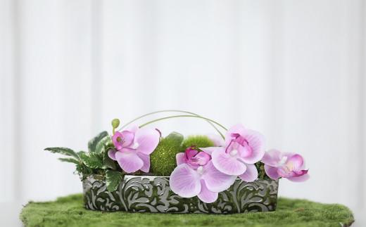 【定期便/3か月】【空気をきれいにするお花】お家まるごとアートフラワー