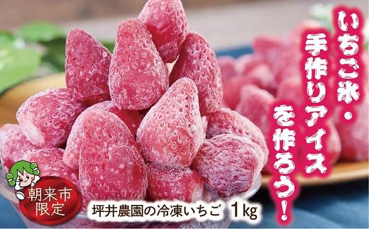 A-54 いちご氷・手作りアイスを作ろう!坪井農園の冷凍いちご 【1㎏×1袋】