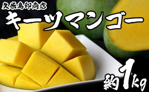 久米島印商店 キーツマンゴー約1kg