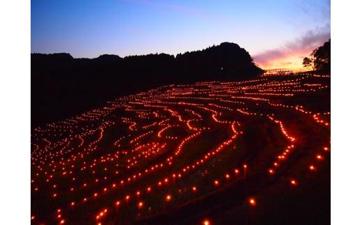 「日本の棚田百選」に選ばれた大山千枚田 棚田の夜祭り(10月頃)