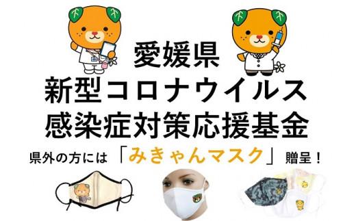 愛媛県新型コロナウイルス感染症対策応援基金