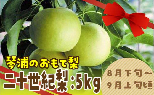 42.【先行予約】二十世紀梨