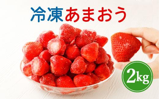 うるう農園の 冷凍 あまおう 2kg フルーツ 苺 イチゴ いちご 果物【予約販売】1月から発送