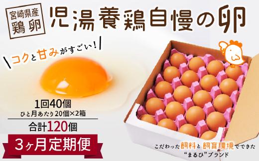 <児湯養鶏自慢の卵 計120個(40個×3回)>3ヶ月定期便【C55】