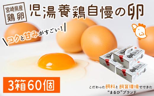 <児湯養鶏自慢の卵 >ネッカリッチ赤たまご「児湯一番」60個【B23】