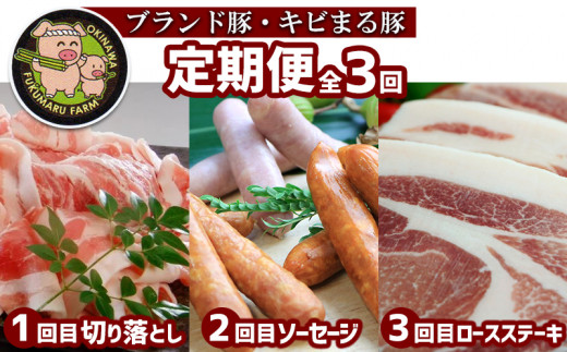 【定期便:全3回】ブランド豚を堪能!キビまる豚切り落とし&ソーセージ&ロースステーキ