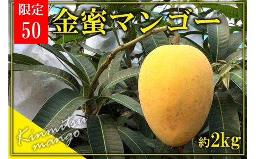 【2020年発送】東村産(クガニ)金蜜マンゴー【50セット限定】