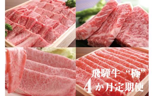 """飛騨牛""""極"""" 4か月 定期便 焼肉・しゃぶしゃぶ・ステーキ・すき焼き 堪能コース 飛騨牛 肉 和牛"""